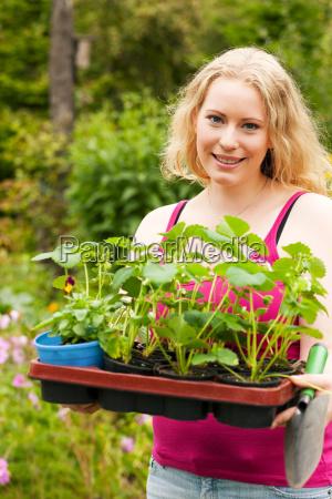 ogrodnictwo sadzenie truskawek