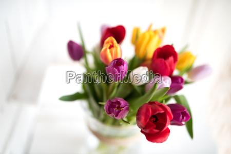 Stockphotos 20892257