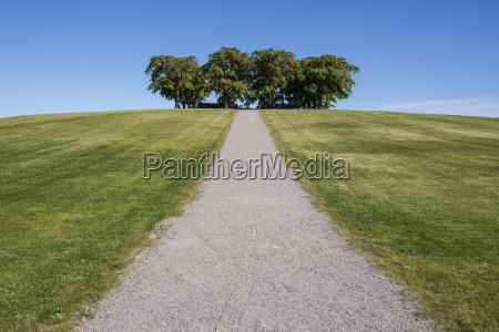 niebieski jazda podrozowanie kolor drzewo gora