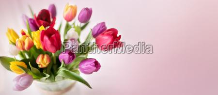Stockphotos 20903869